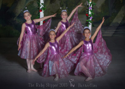 Liezel-Marais-Dance-Academy-The-Ruby-Slipper-2015-Butterflies