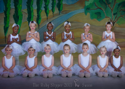 Liezel-Marais-Dance-Academy-The-Ruby-Slipper-2015-Swans