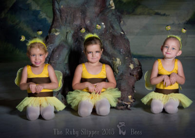 Liezel-Marais-Dance-Academy-The-Ruby-Slipper-Bees