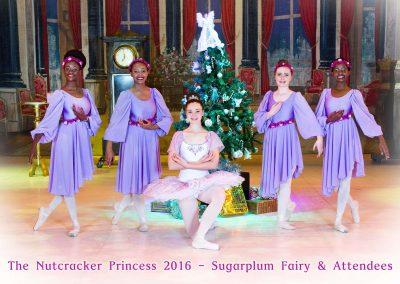 26-Sugarplum-Fairy-&-Attendees-Web