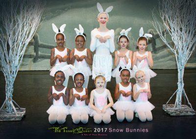 Snow-Bunnies